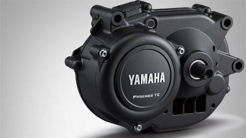 Motor Yamaha PW-TE