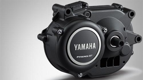 Motor Yamaha PW-ST